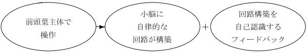 201012171730-5.jpg