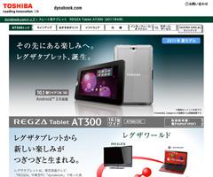 201104251000-1.jpg
