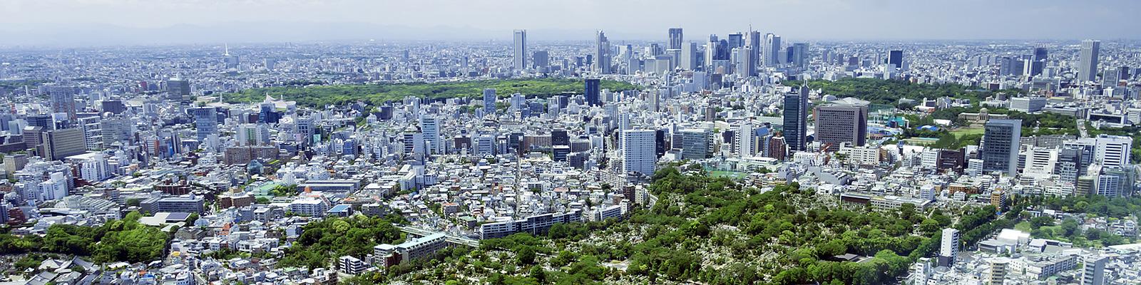 東京 公園 鳥瞰