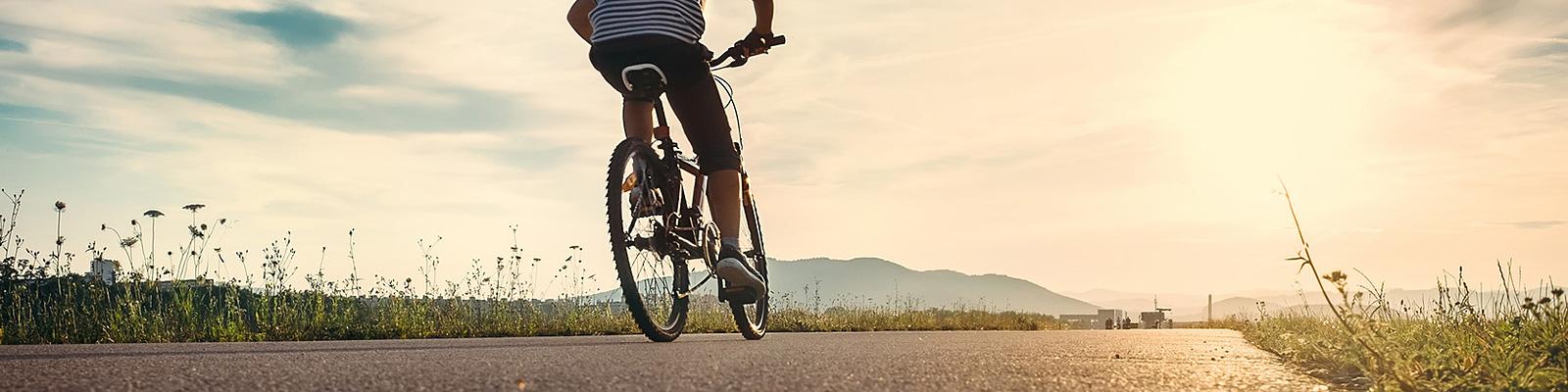 夏 自転車