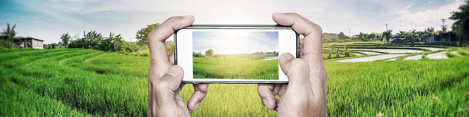 農業 イメージ