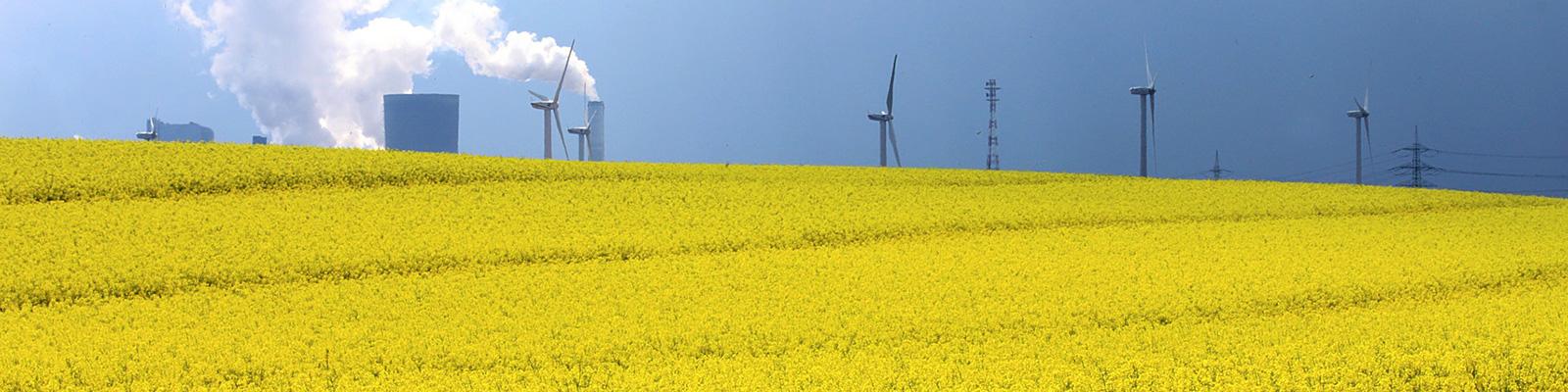 農業 風車 イメージ