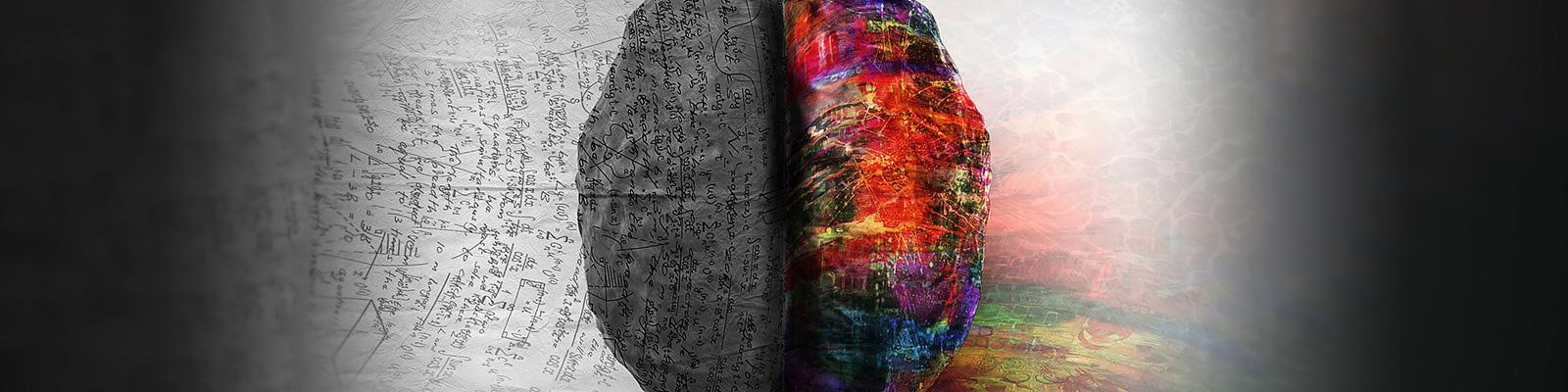 才能 脳 イメージ