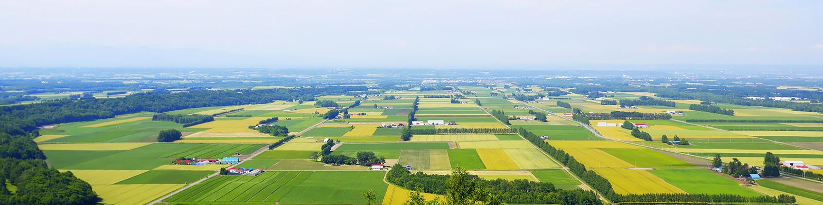 北海道 帯広 農業 イメージ