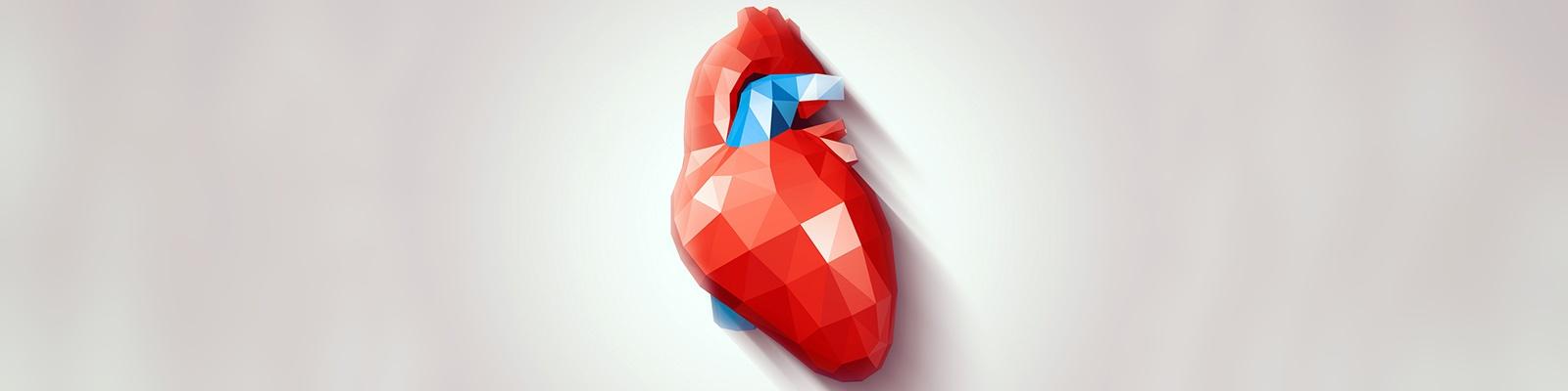 心臓 イメージ