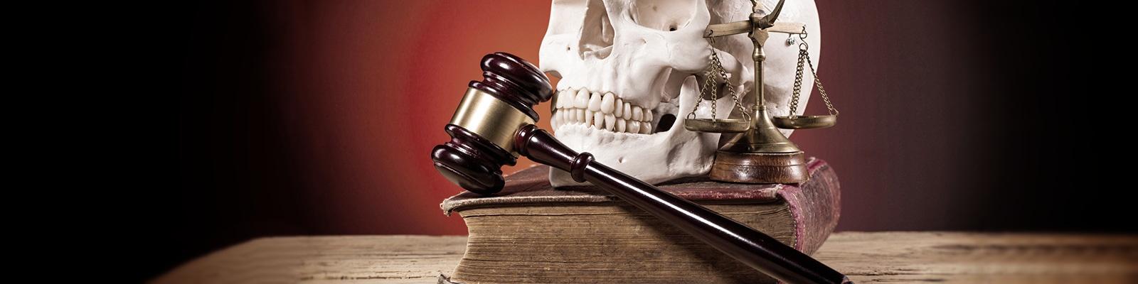 法律 脳 イメージ