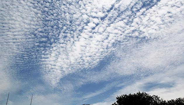 高積雲 ©岩槻秀明
