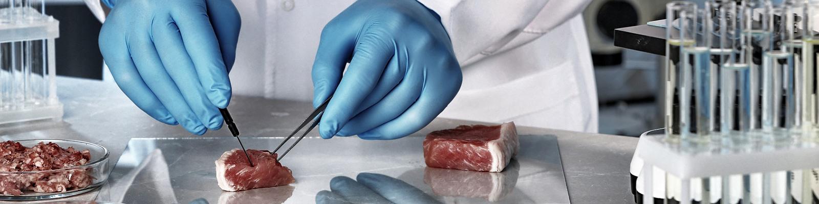 肉 科学 実験 イメージ