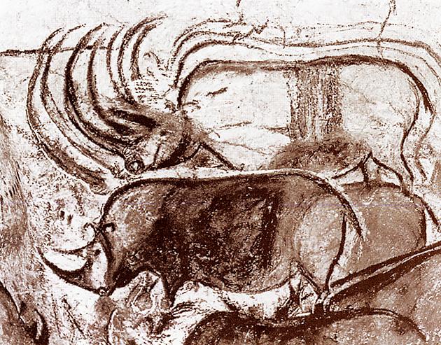 図6──フランスで発見された3万年以上前の洞窟画。(『ヒトはなぜ絵を描くのか』中原佑介(編著)、フィルムアート社、2001)