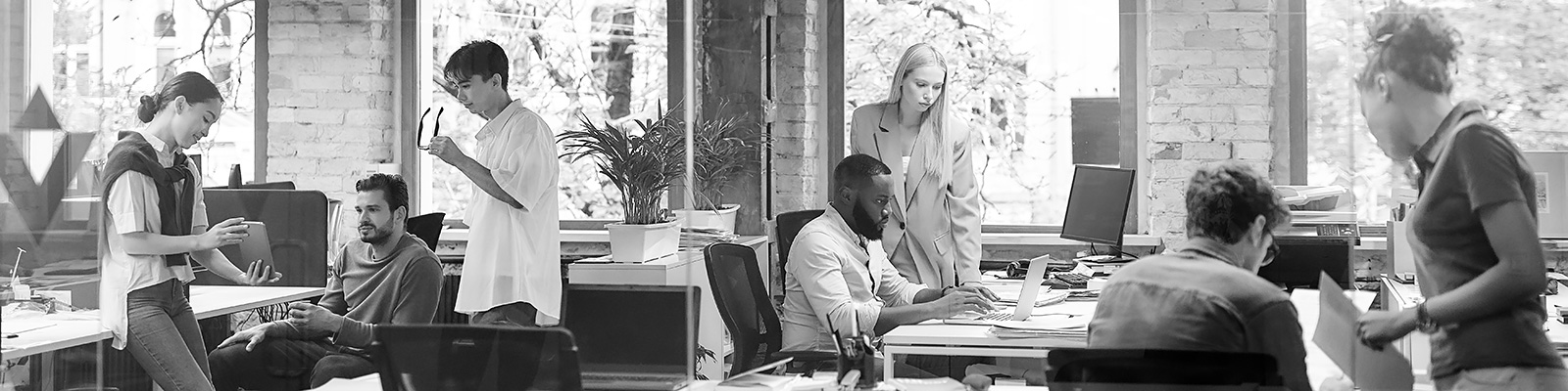 多様性 人種 オフィス イメージ